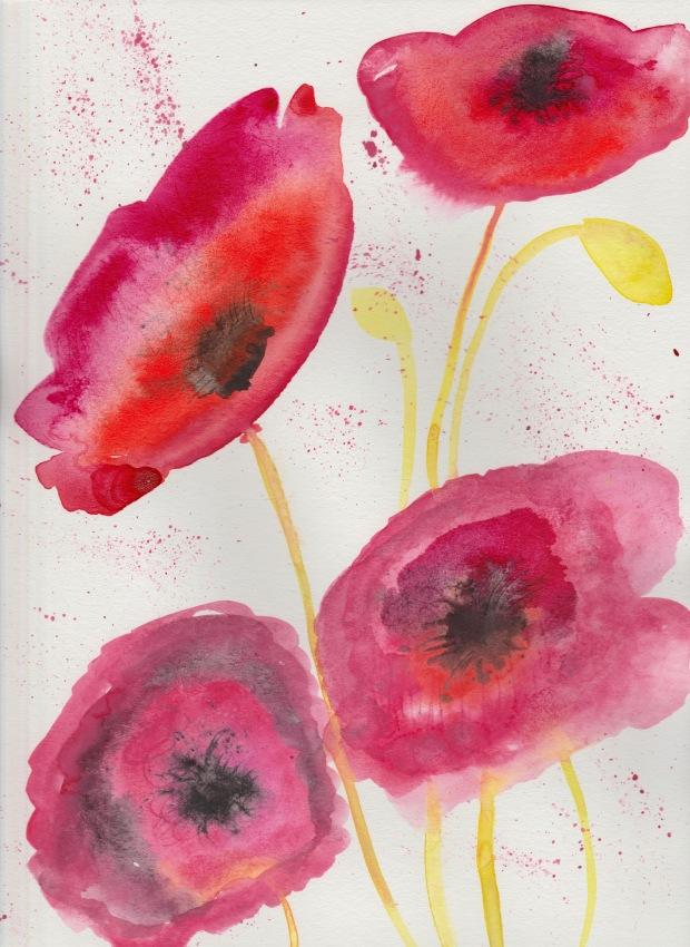 Poppy 3 Jen Lashua